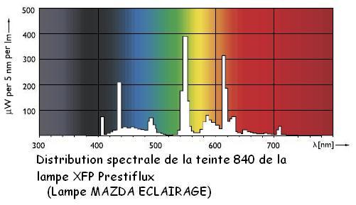 lampe-spectre-fluo