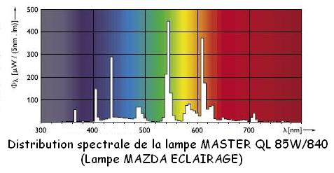 lampe-spectre-ql